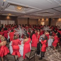 Stay Up to Date on All 2019 Red Dress Gala News!